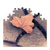 Isolated dry leaf on the ground - concept image in jigsaw puzzle. Shape Royalty Free Stock Photos