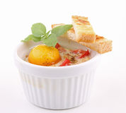 Isolated egg cocotte Stock Image