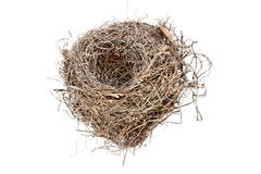Isolated Empty Bird Nest Stock Images