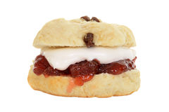 Isolated english scone with cream and jam Stock Images