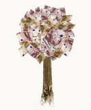 Isolated euro banknote tree Royalty Free Stock Photos