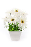 Isolated of fake flower with vase on white Royalty Free Stock Photo