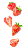 Isolated falling strawberries stock photography