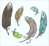 Isolated feathers. Cartoon drawing. Vector illustr Royalty Free Stock Images