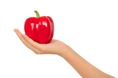Female hand carry a fruit of paprika Stock Photo