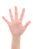 Isolated female hand showing the number five Royalty Free Stock Image
