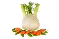 Isolated fennel with sugar snaps and carrots Royalty Free Stock Images