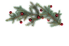 Isolated Fir branches with Christmas tree balls Royalty Free Stock Photos