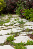 Isolated flagstone path with surrounding greenery. An isolated pathway of flag stone surrounded by bushes Royalty Free Stock Photo