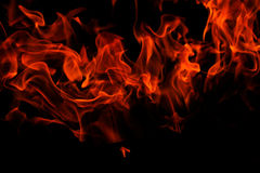 Isolated flames Stock Image