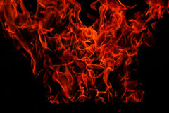 Isolated flames. Good for montage Royalty Free Stock Photo