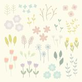 Isolated floral elements. Vector EPS 10 hand drawn illustration Stock Photos