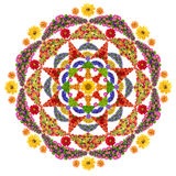 Isolated floral happiness mandala Stock Photos