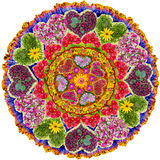 Isolated floral love mandala Royalty Free Stock Photography