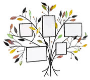 Isolated floral tree with leafs and frames for Royalty Free Stock Photography