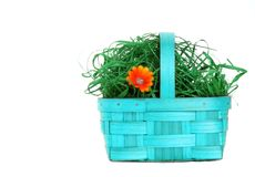 Isolated flower basket Royalty Free Stock Photography