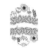 Isolated flowers frame decoration design Stock Image