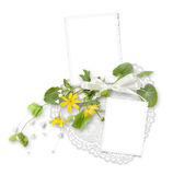 Isolated frame for two photos with yellow flowers Royalty Free Stock Image
