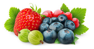 Free Isolated Fresh Berries Royalty Free Stock Images - 19681039