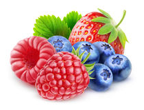 Isolated fresh berries Stock Photography