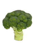 Isolated fresh broccoli Royalty Free Stock Photography