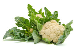 Isolated fresh Cauliflower cabbage  with green leaves Stock Images