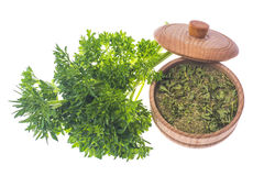 Isolated Fresh and dried ground parsley greens. stock image