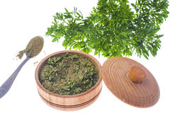 Isolated Fresh and dried ground parsley greens. Studio Photo Stock Photos