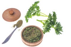 Isolated Fresh and dried ground parsley greens. Studio Photo Royalty Free Stock Image
