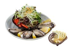 Isolated Fresh oysters and Japanese salad served with Sliced and lemon sauce on white stone bowl.  Royalty Free Stock Photography