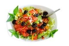Isolated fresh plain salad garnished with mint Royalty Free Stock Photo
