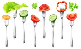 Isolated cut vegetables on a fork royalty free stock images