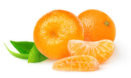 Isolated fresh tangerines Stock Photography