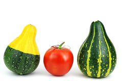 Isolated fresh tomato and ornamental gourds Royalty Free Stock Images