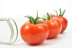 Isolated fresh tomatoes Royalty Free Stock Photography
