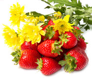 Isolated fruits, strawberries Royalty Free Stock Photo