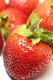Isolated fruits , Strawberries Stock Image