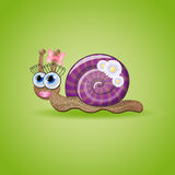 funny female snail. Stock Photo