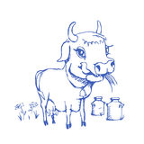 Isolated funny sketch cow for milk product. Cartoon cute cow Royalty Free Illustration