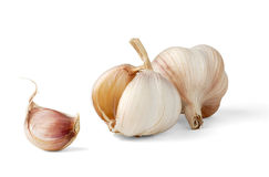 Isolated Garlic Royalty Free Stock Images