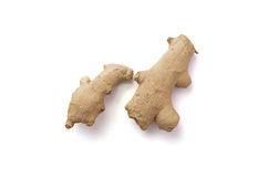 Isolated ginger root Royalty Free Stock Photos