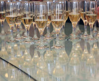 Isolated glasses of alcohol a holiday Royalty Free Stock Photo