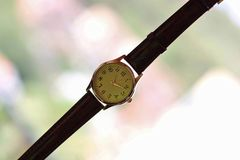 gold and quartz watch with leather strap. Gold and quartz watch with leather strap at home royalty free stock images