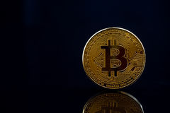 Isolated golden bitcoin on black background with reflection, cop Royalty Free Stock Photos
