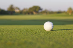 Isolated golf ball at dawn. Isolated white golf ball on the ground at dawn Royalty Free Stock Image