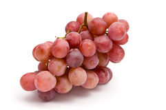 Free Isolated Grape Royalty Free Stock Images - 8309199