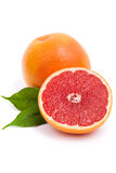 Isolated grapefruit royalty free stock photography