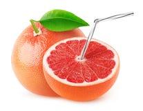 Isolated grapefruit juice Royalty Free Stock Image