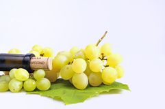 Isolated  grapes. Grapes and a bottle of white wine isolated Stock Images