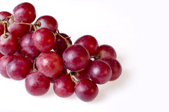 Isolated grapes royalty free stock photography